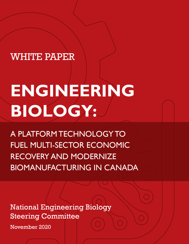 Red background with the text: White Paper Engineering Biology - a platform technology to fuel multi-sector economic recovery and modernize biomanufacturing in canada